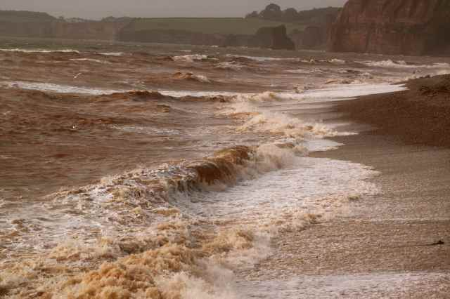 wild sea Sidmouth