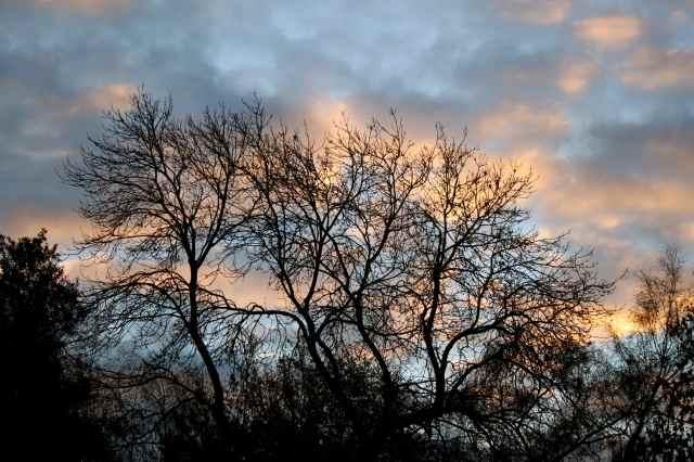 sunrise 7-12-13
