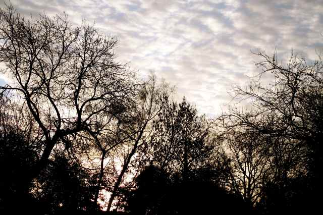 morning sky 5-1-14