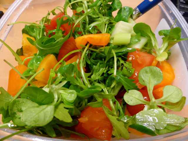 salad 27-1-14