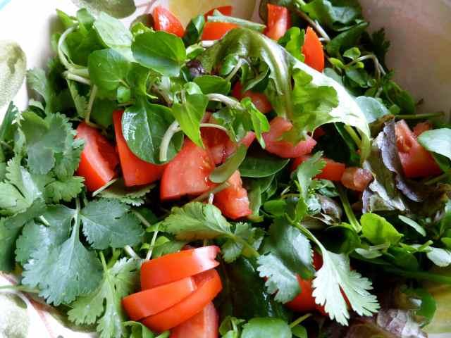salad greens and tomato