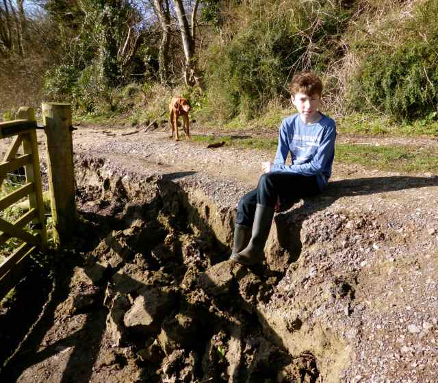 Harry by landslide