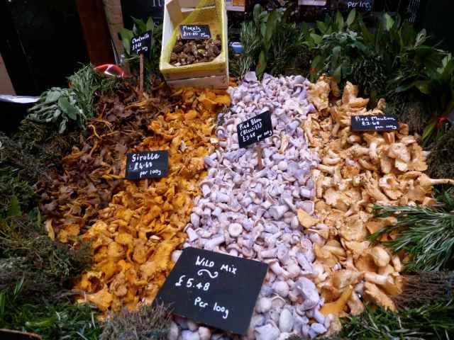 mushrooms at Turnips