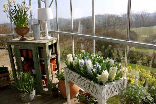 Corner of SR greenhouse