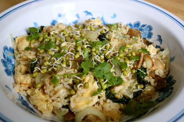 egg fried rice and sprouts