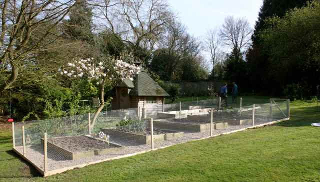 New Veg Garden 1