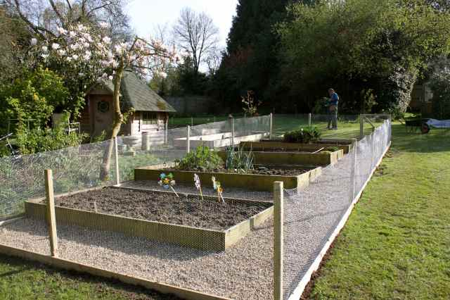 new veg garden 2