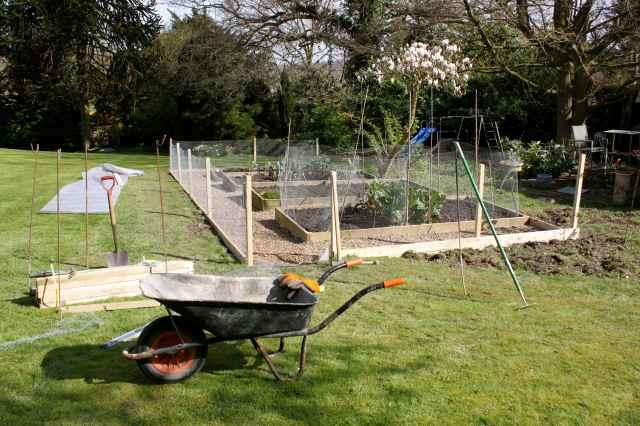 new veg garden 3