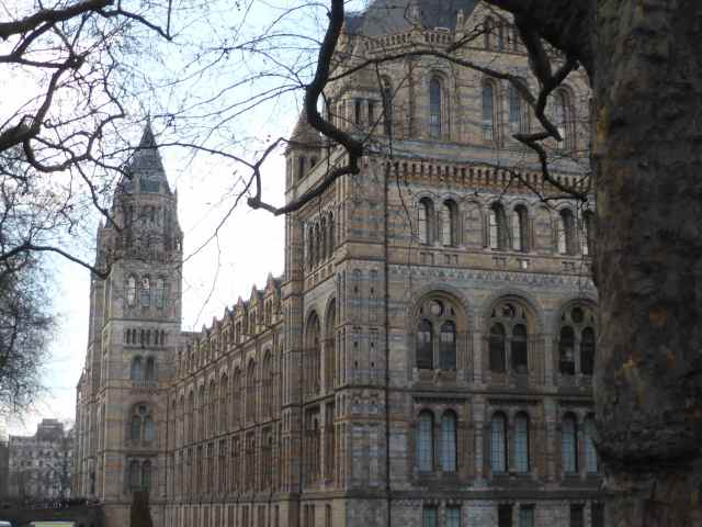 Outside NHM