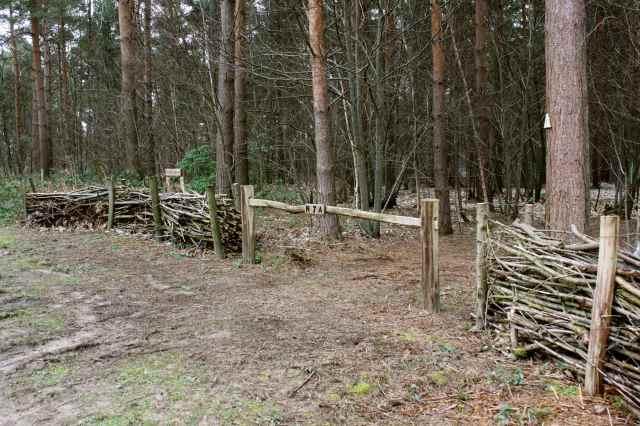 Provate woods