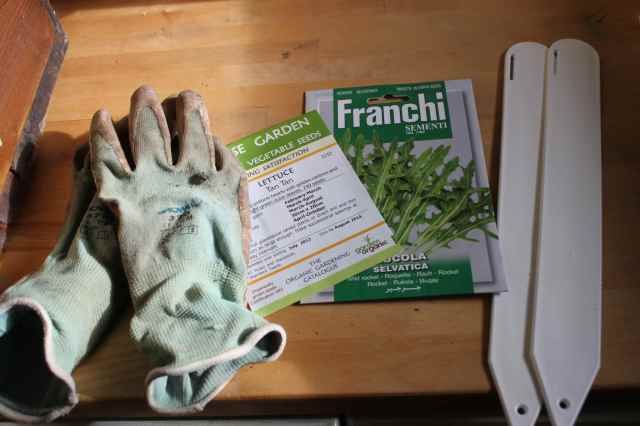seeds and gloves