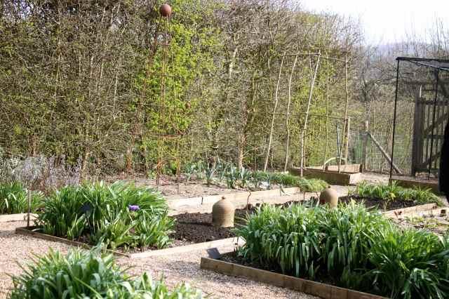 SRs garden 1
