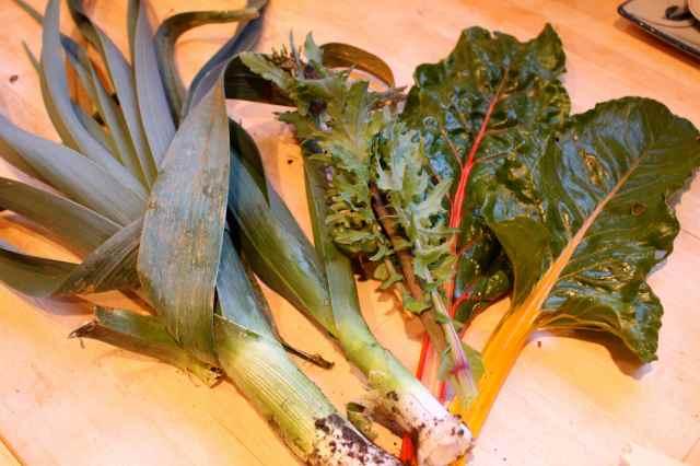veg from garden 28-3-14