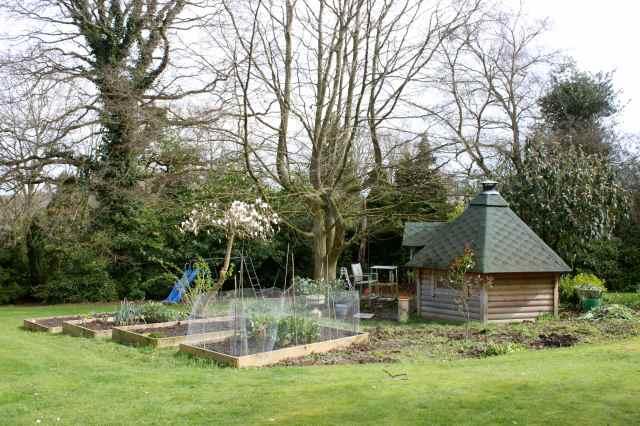 veg garden 22-3-14