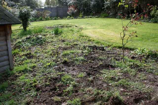 veg garden makeover 4