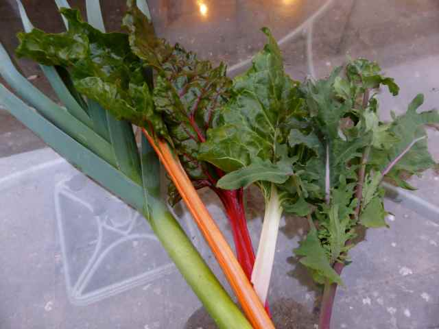 leek, kale and chard