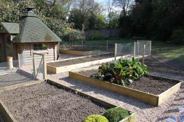 veg garden 4