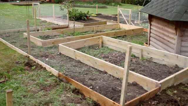 Veg garden 6-4-14 2