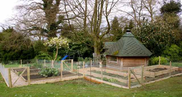 veg garden 6-4-14 3