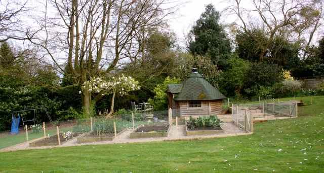 veg garden 6-4-14 4