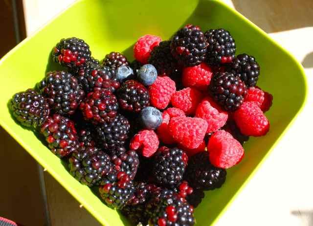 3 berries