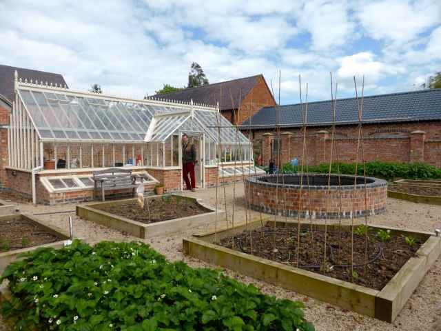 BJ's veg garden