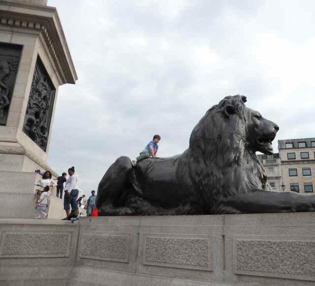 H on lion 2