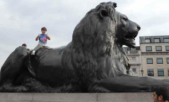 H on lion