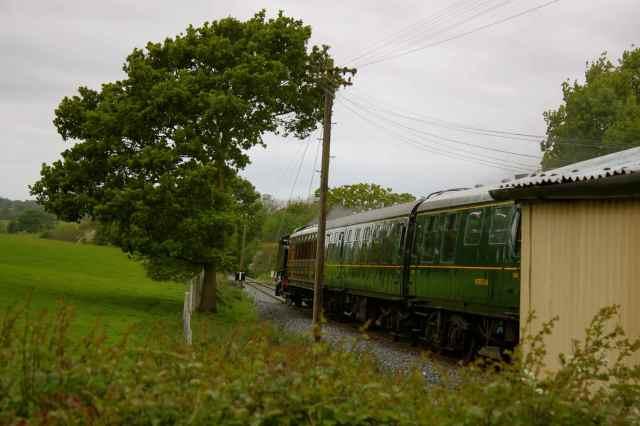 Tenterden train