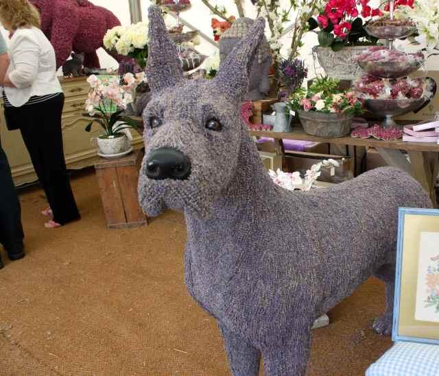 large lavendar dog