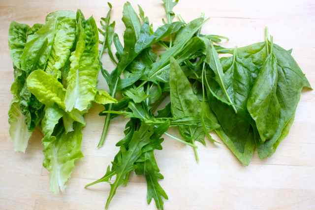 lettuce, rocket and spinach