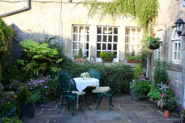 our courtyard garden