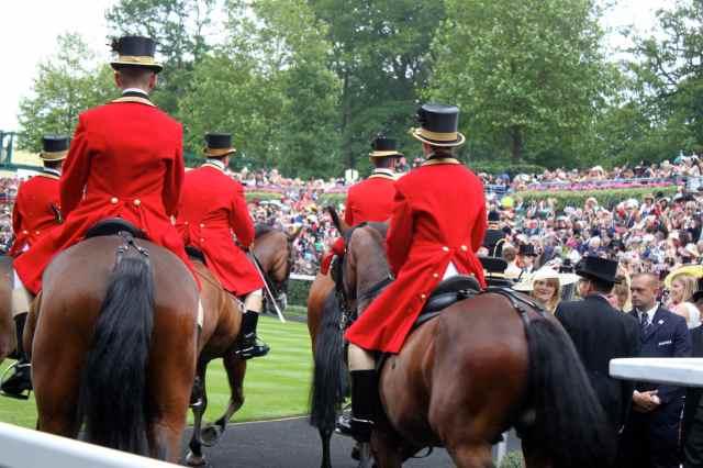Queen's horses 1