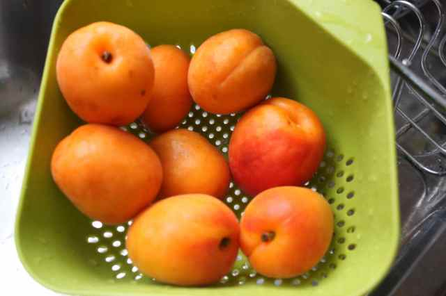 apricots in green colander