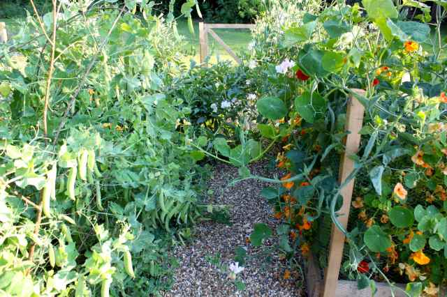 garden 15-7 3