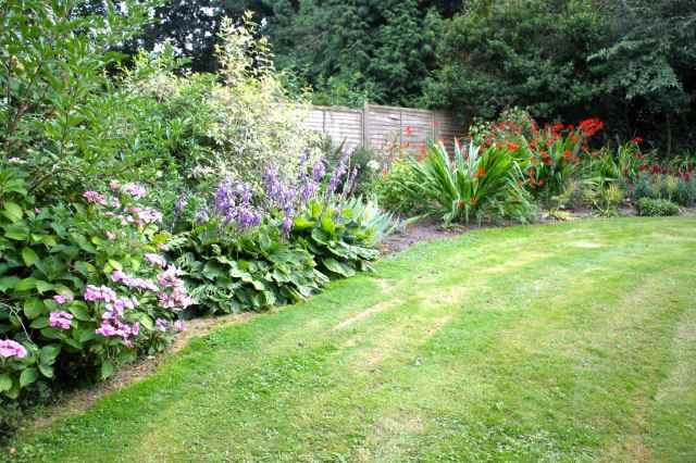 large flower bed 1