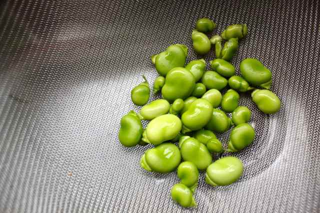 small broad beans
