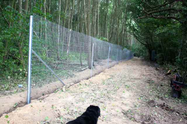 the fence 3
