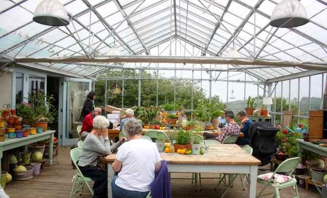 YO in greenhouse