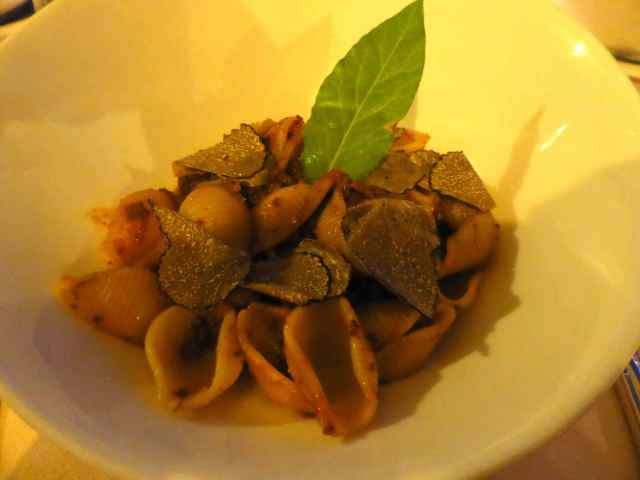conchiglie goose ragout with truffles