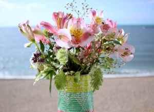 flowers in sunny window