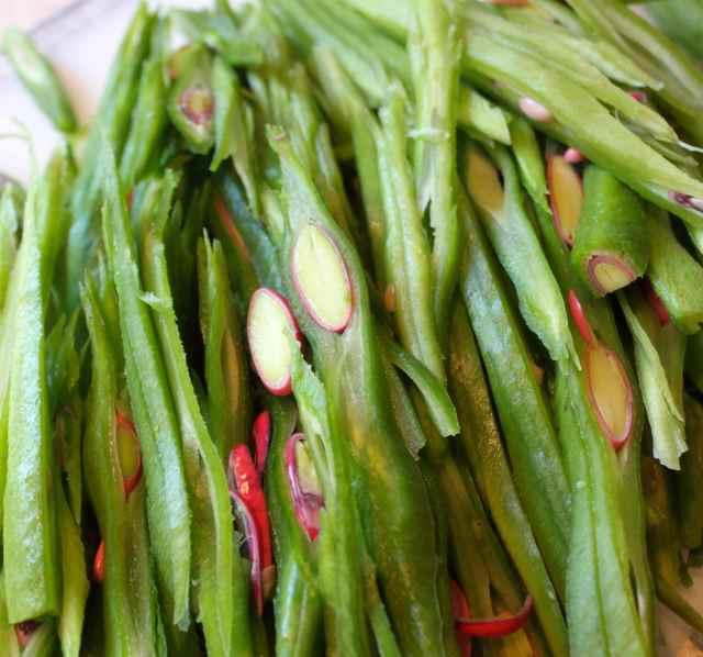 garden runner beans