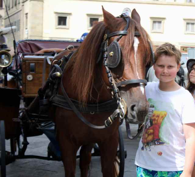 H by horse in Firenze