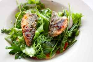 mackerel salad Hix