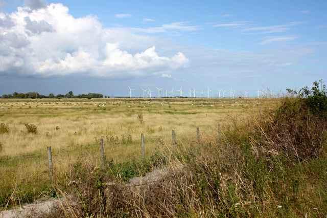 Rye wind farm
