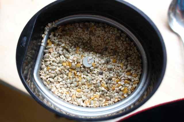 seeds in grinder
