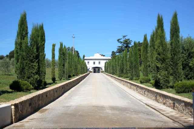 villa Tolomei drive