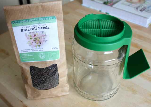 broccoli seeds and sprouting jsr