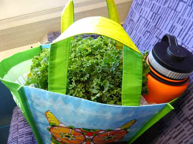 kale in bag on train