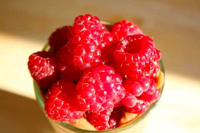 raspberries from the garden